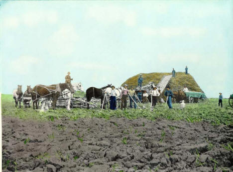 Horse powered threshing rig, Blue Earth Minnesota, 1898 Courtesy Fred Hultstrand History in Pictures Collection, NDIRS-NDSU, Fargo - See more at: http://www.lakesnwoods.com/BlueEarthGallery.htm#sthash.i9zmvAlC.dpuf