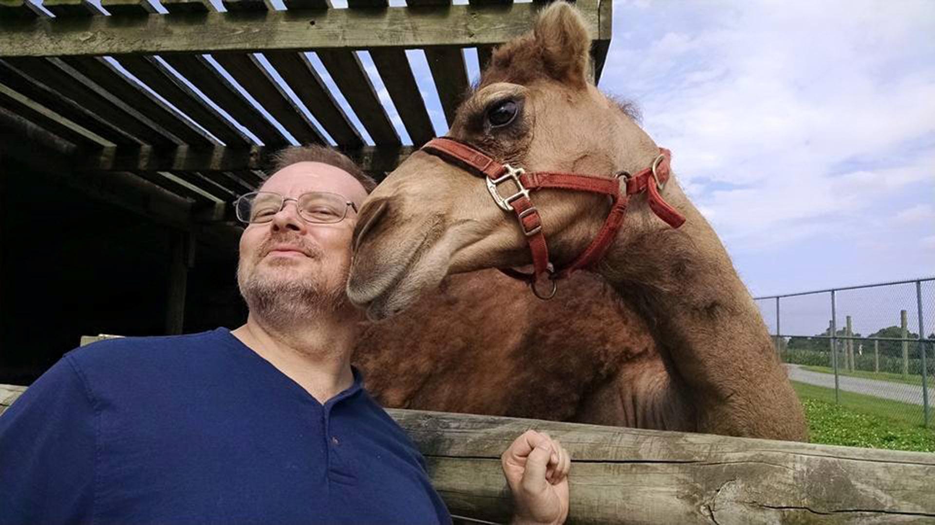 Close encounter with a camel at Lake Tobias Wildlife Park