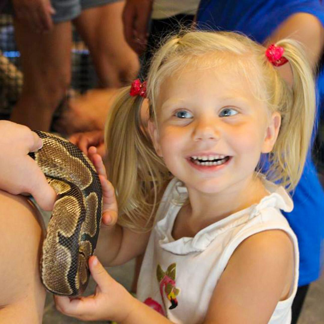 Girl touching snake at Lake Tobias Wildlife Park Reptiles & Exotics exhibit