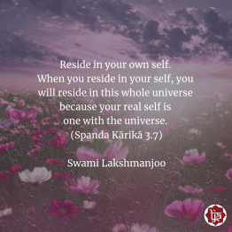 Reside in your own self. When you reside in your self, you will reside in this whole universe because your real self is one with the universe. (Spanda Kārikā 3.7) Swami Lakshmanjoo