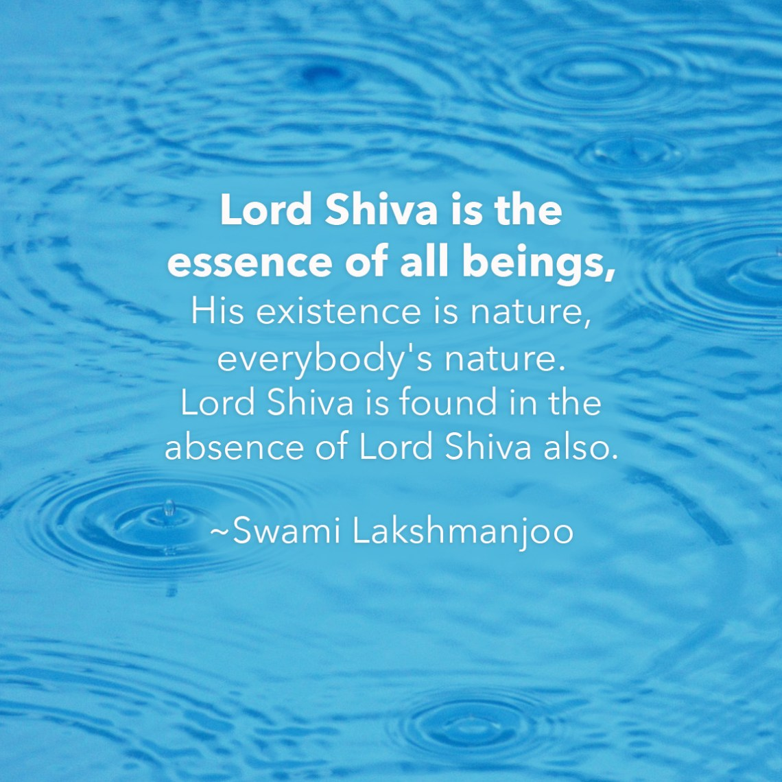 Lord Shiva is the essence of all beings, His existence is nature, everybody's nature. Lord Shiva is found in the absence of Lord Shiva also. ~Swami Lakshmanjoo