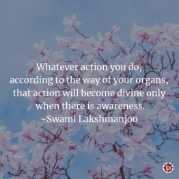 Whatever action you do, according to the way of your organs, that action will become divine only when there is awareness. ~Swami Lakshmanjoo