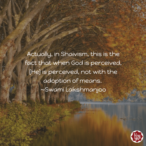 Actually, in Shaivism, this is the fact that when God is perceived, [He] is perceived, not with the adoption of means. ~Swami Lakshmanjoo