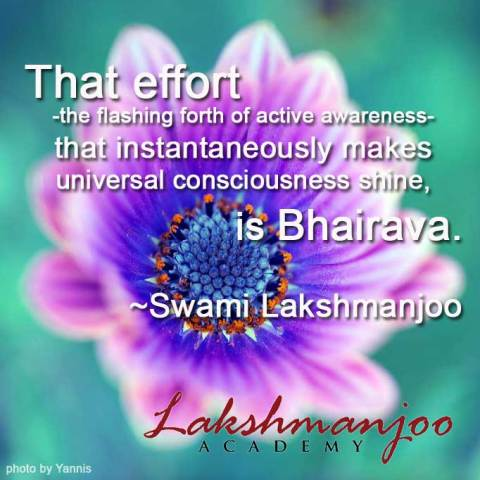 effort by Swami Lakshmanjoo