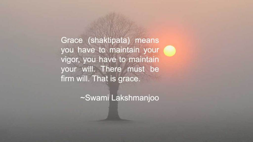 Grace (shaktipata) means you have to maintain your vigor, you have to maintain your will. There must be firm will. That is grace. ~Swami Lakshmanjoo