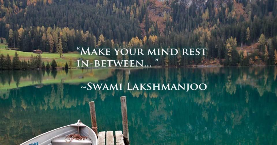Make your mind rest in-between. ~Swami Lakshmanjoo