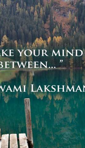 Make your mind rest in-between. ~Swami Lakshmanjoo