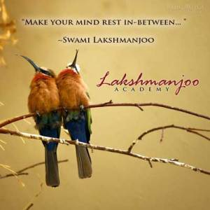 Make your mind rest in-between, quote by Swami Lakshmanjoo