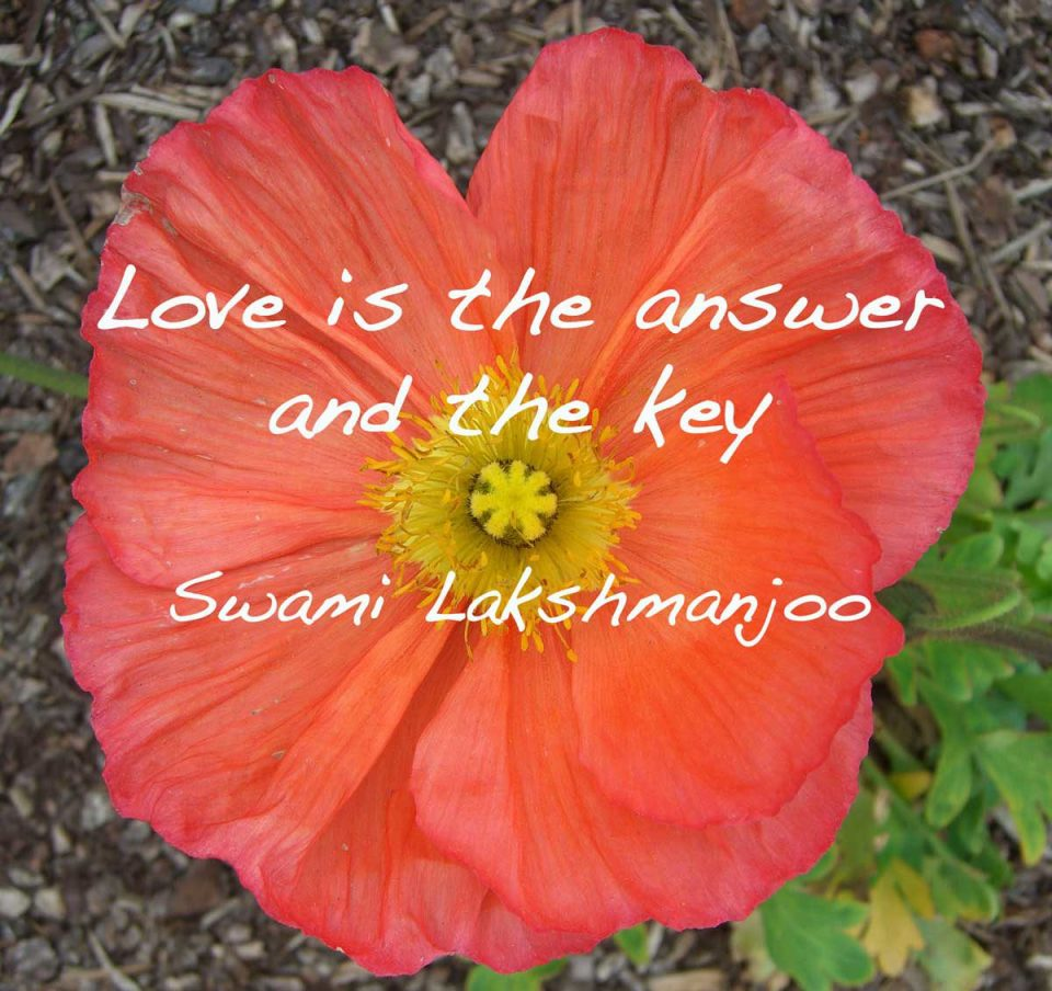 """""""Bhakti, devotion, love"""" (Bhagavad Gita)"""