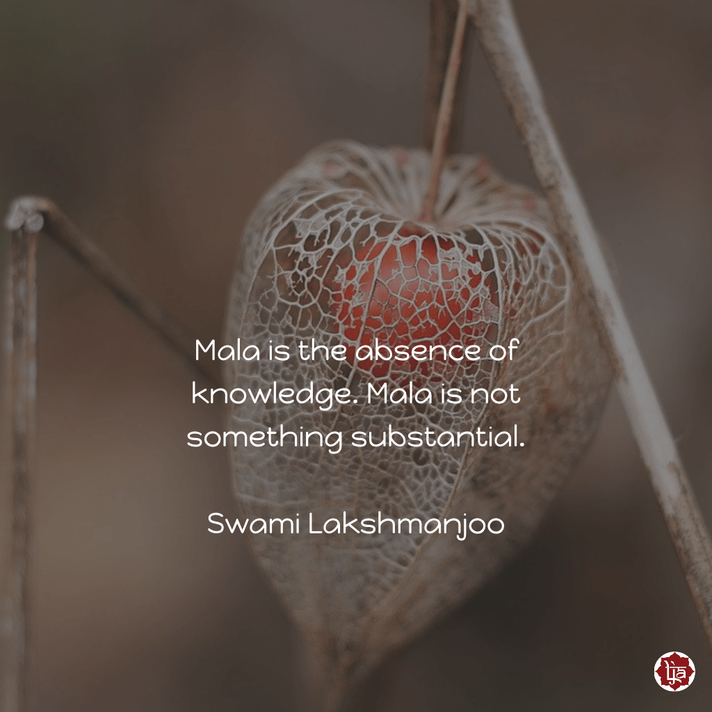 Mala is the absence of knowledge. Mala is not something substantial. ~Swami Lakshmanjoo