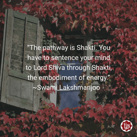 """The pathway is Shakti. You have to sentence your mind to Lord Shiva through Shakti, the embodiment of energy."" ~Swami Lakshmanjoo"