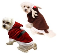 Trick-or-Treating With Your Dog: Dog Costumes to Complete ...