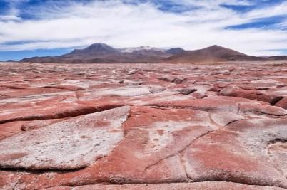 La La Leo - San Perdro de Atacama_07