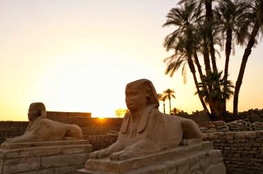 Sfinxen bij Luxor tempel met zonsondergang