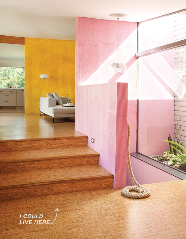 Interior stairs and pink wall of Purdy Devis Residence