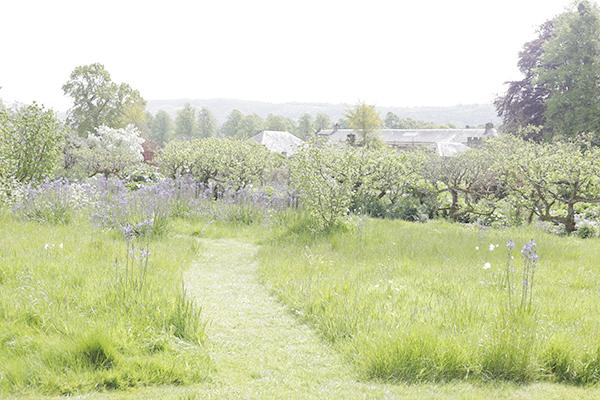 la-la-lovely-english-garden