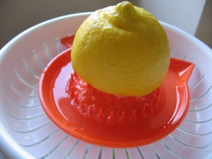 img 6935 resize 300x225 Limonada