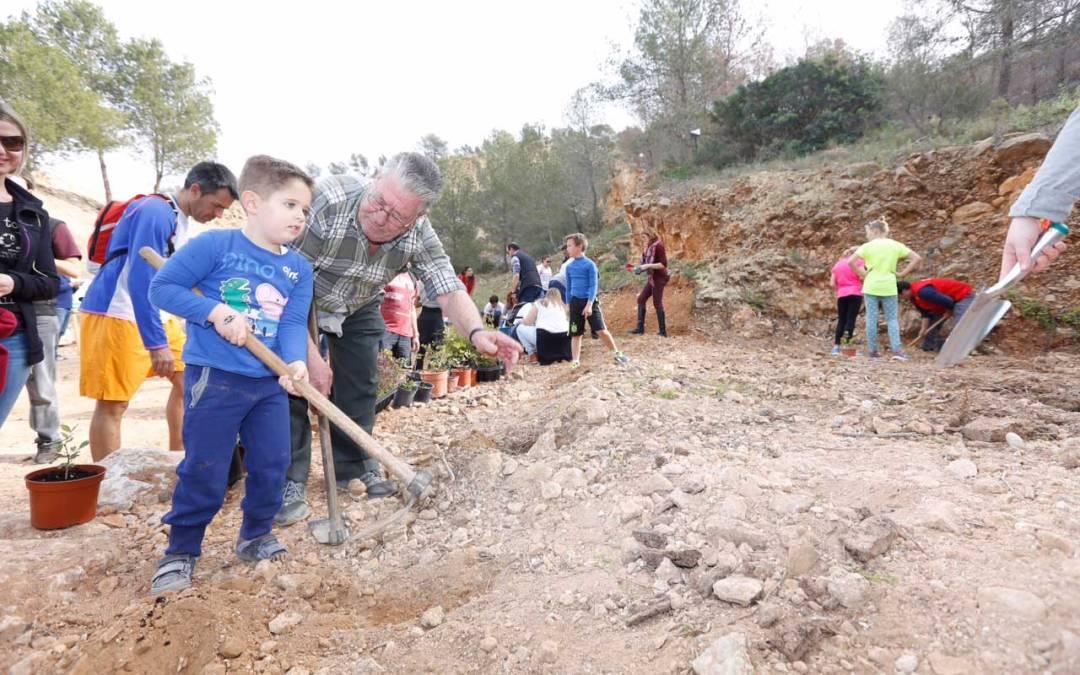 Un centenar de personas participan en el Día del Árbol plantando especies autóctonas en Serra Gelada