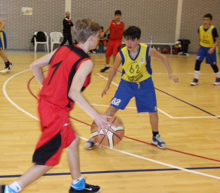 El CB Terralfas  y Stirling  finalistas del torneo de categoría infantil que se celebra en el pabellón Pau Gasol.