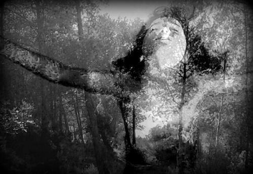 La belga Patricia De Saedeleer cuelga sus imágenes en la Fundación Frax de l'Albir