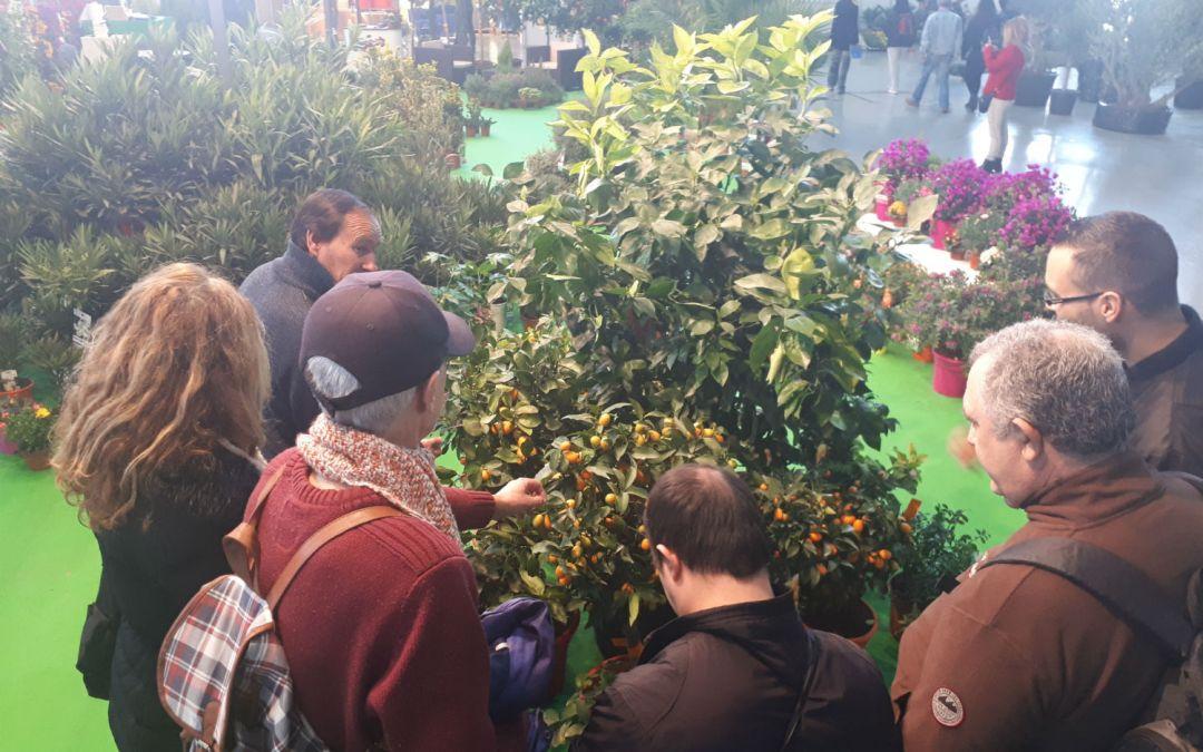Los alumnos de curso de jardinería para personas con discapacidad visitan Viveralia