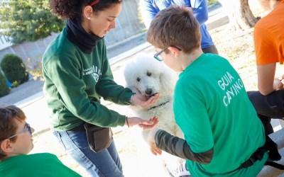 L'Alfàs impulsa un programa de terapia con perros que ayuda a los jóvenes a mejorar su rendimiento académico