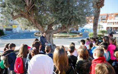 Alumnos del CEIP Veles e Vents conocen los árboles singulares de l'Alfàs del Pi