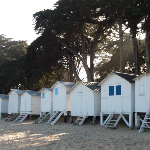 Noirmoutier à la découverte de l'île
