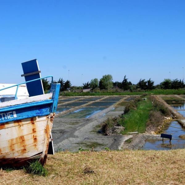 Ile de Noirmoutier, tous en ``sel`` à travers les marais