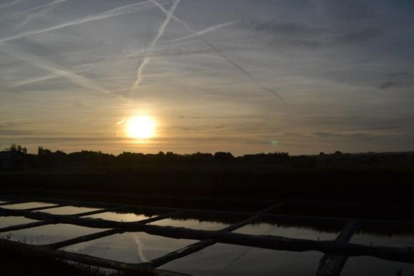 levé-du-soleil-marais-2