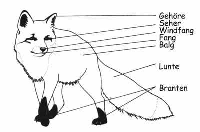 Fuchs - Das Jagdbrauchtum