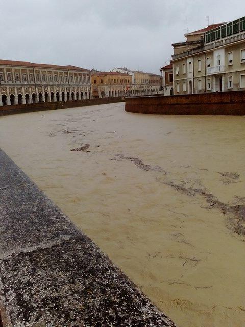 A Senigallia torna l'allarme per il Misa(