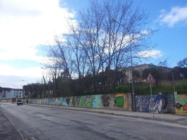 """""""A Senigallia anche le seghe si fermano sul più bello"""""""