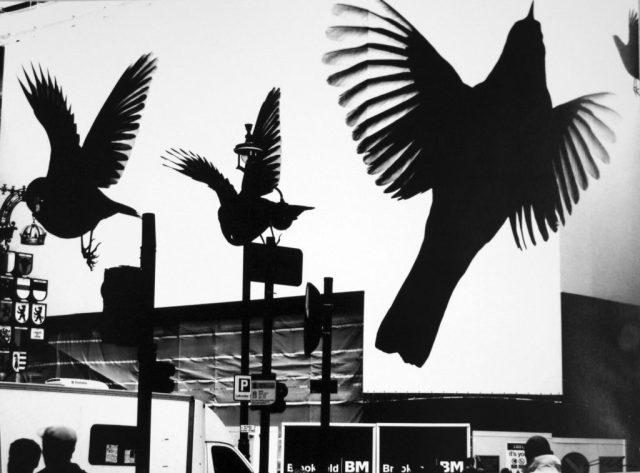 Due nuove fotografie di Enzo Carli entrano nella raccolta del Musinf