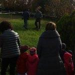 Quest'anno piantate 28 querce roverelle negli spazi verdi di Ostra Vetere