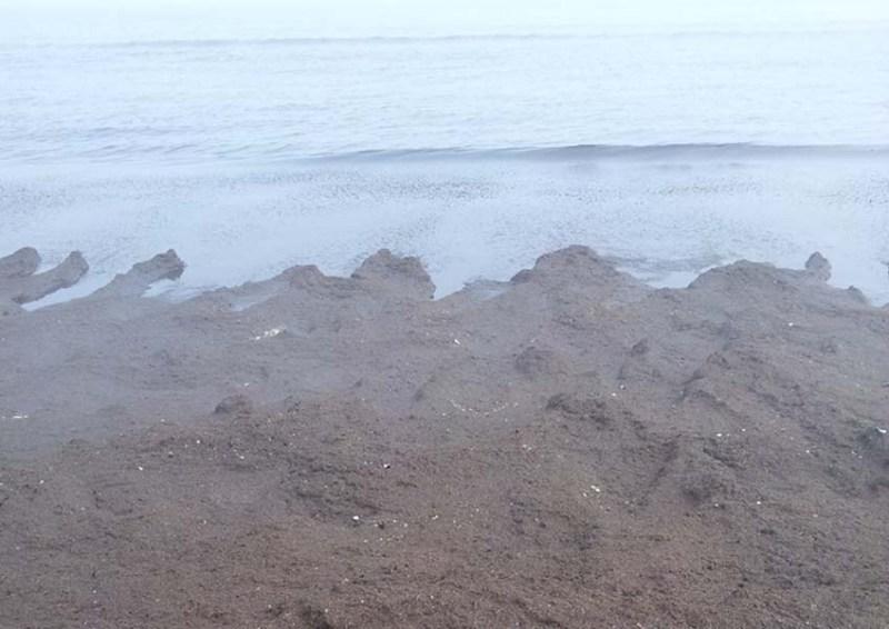 SENIGALLIA / Spiaggia troppo sporca, la II Commissione si riunisce d'urgenza alla Rotonda