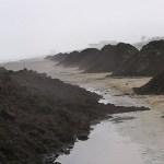 E' finito in Parlamento il caso delle tonnellate di rifiuti disseminati sulla spiaggia di Senigallia