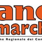 Al sindaco di Ostra anche lasolidarietà dell'Anci Marche