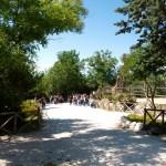 Al Parco Zoo di Falconara il primo concorso di body painting