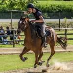 I migliori cavalieri italiani al parco equestre di Moie per la quinta tappa delle Giostre medioevali