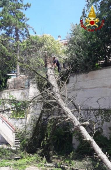 CASTELFIDARDO maltempo vdf2019-07-11-x0 (2)