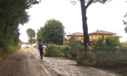 MAROTTA via cesanense rami caduti carabinieri sterpettineAgM2019-07-09-x00 (2)