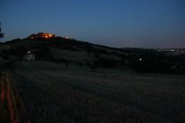 PERGOLA estate2019-x0 (3)