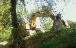 """""""Autorizzato lungo il fiume Misa l'abbattimento di migliaia di grandi alberi protetti"""""""
