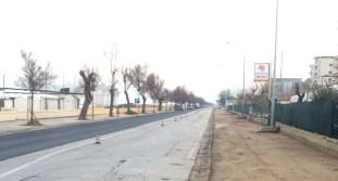 SENIGALLIA ciclovia adriatica lavori lungomare AgM2020-01-28 (35)