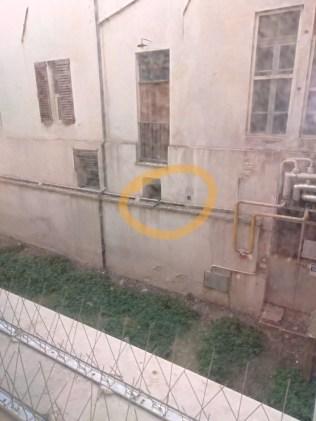 MONDOLFO guano piccioni centro storico2020-02-14 (2)
