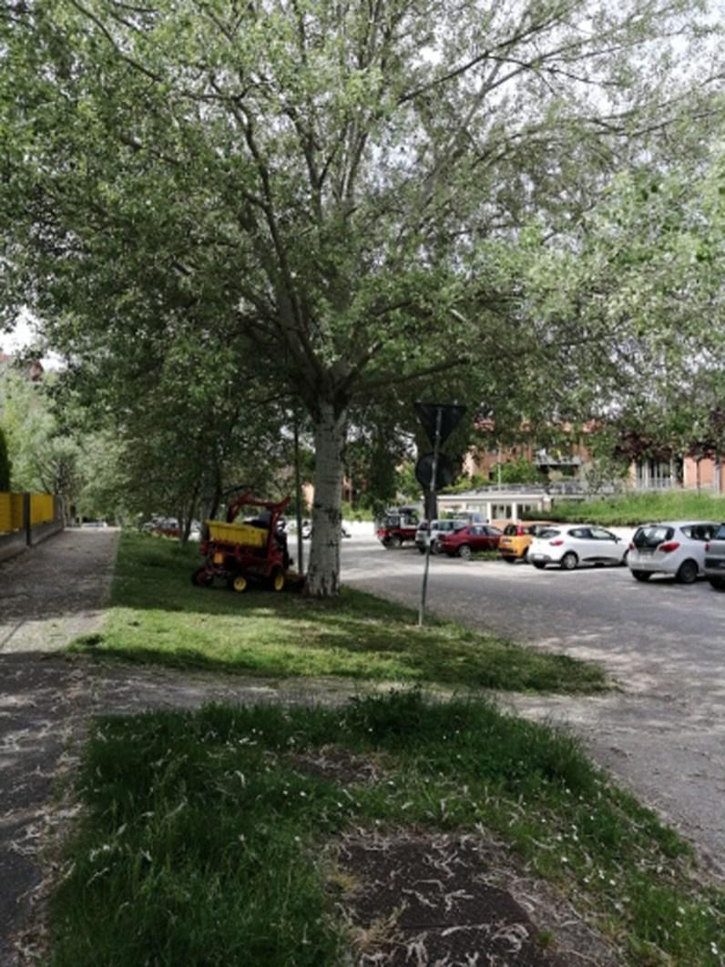 JESI aree verdi giardinieri2020-04-29 (3)
