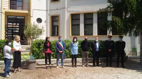 FANO scuola Corridoni alberro Giovanni Falcone2020-05-29 (1)