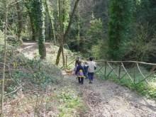 CASTELPLANIO sentiero granchio nero natura2020-06-06 (3)