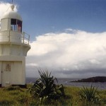 Top things to do at Fingal Head